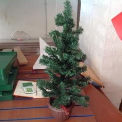 albero da muro €20 - Forlì 10 alberi da muro...