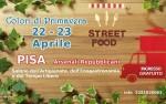 Colori di Primavera a Pisa FREE - Pisa 22 e...
