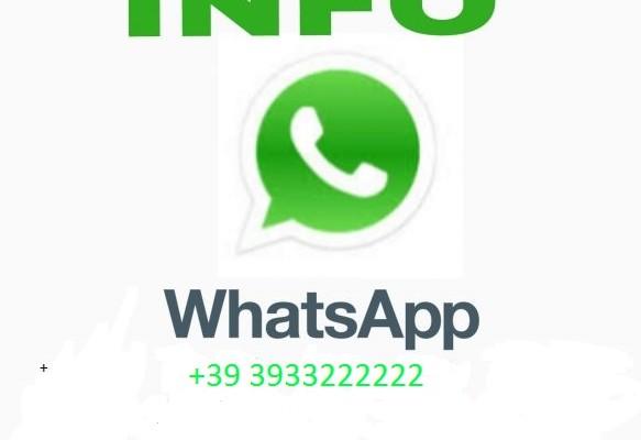 971607.contatto-583x486 - Copia