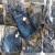 SIE - Stock jeans uomo CORSO da VINCI (21)
