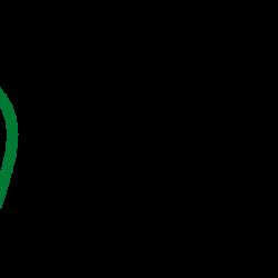 logo nero verde