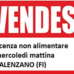 Vendesi Calenzano