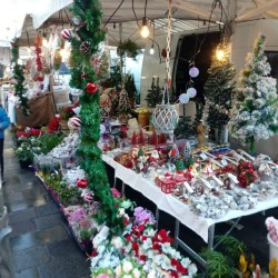 mercato-padova