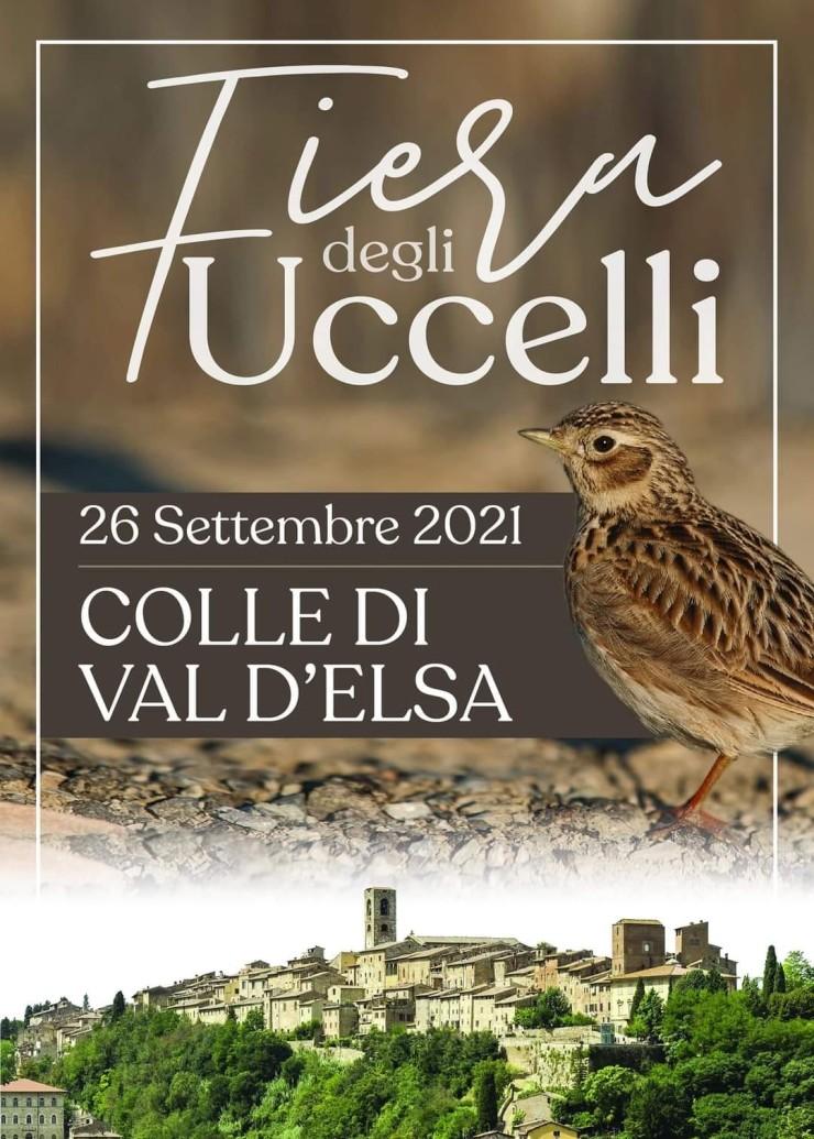 COLLE DI VAL D'ELSA (SI): Fiera degli Uccelli 2021